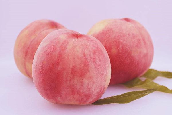 水蜜桃能和牛奶一起吃吗 水蜜桃能和芒果一起吃吗
