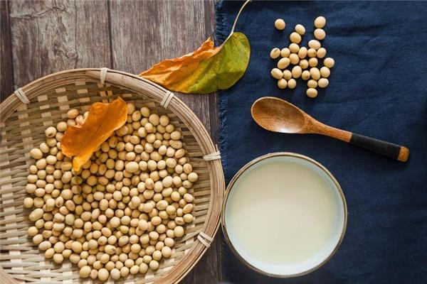 豆浆有豆腥味怎么办 豆浆有腥味能喝吗