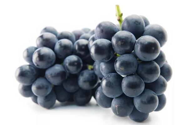 巨峰葡萄的热量高吗 巨峰葡萄的含糖量是多少