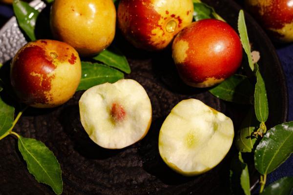 冬枣的含糖量高吗 冬枣的维生素c含量是多少