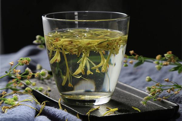 金银花茶能天天喝吗 金银花茶长期喝对身体有什么危害