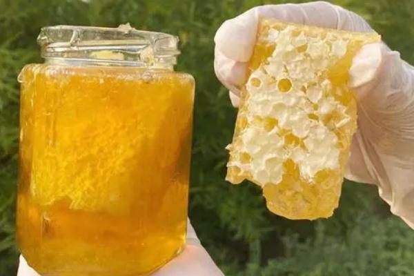 蜂巢蜜是新巢好还是老巢好 蜂巢蜜是不是特别甜