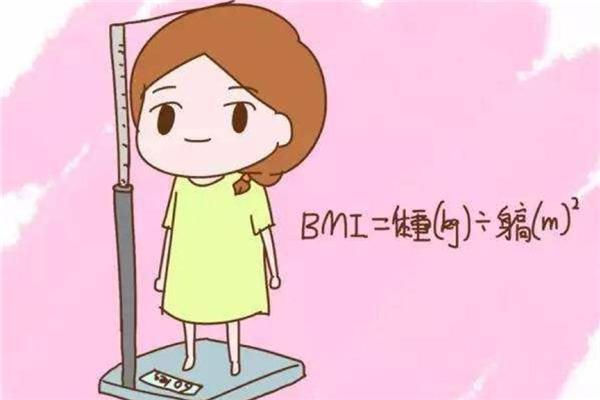bmi体脂率怎么计算 bmi是什么意思