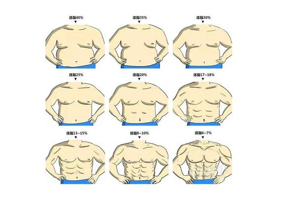 体脂率是脂肪率吗 体脂率是怎么测出来的