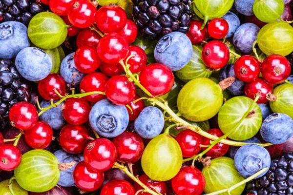 水果代餐减肥有用吗 晚上水果代替晚餐好吗