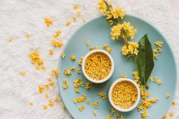 桂花茶有什么作用 桂花茶有副作用吗