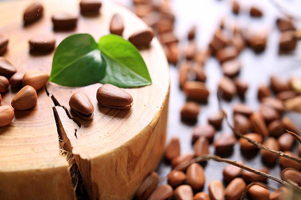 松子的营养价值 松子有什么功效