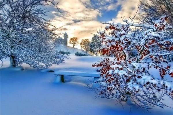 冬季吃什么养胃又补胃 冬季吃什么滋补身子