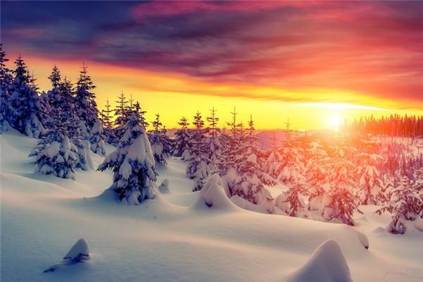 冬季吃萝卜对身体有什么好处 冬季为什么要吃萝卜