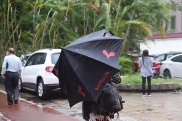 台风会下雨吗 台风会带来什么天气